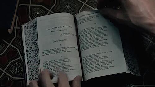 los amores en la luna-libro